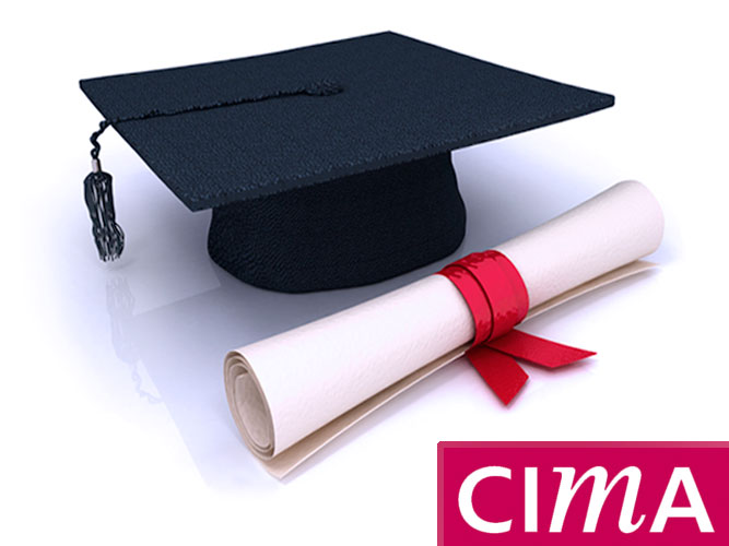 Cima курсы